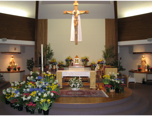 St Joseph Parish – Open for Mass